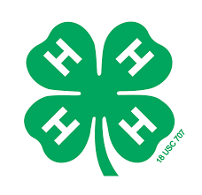 Chattooga 4H Plans Monday Activities
